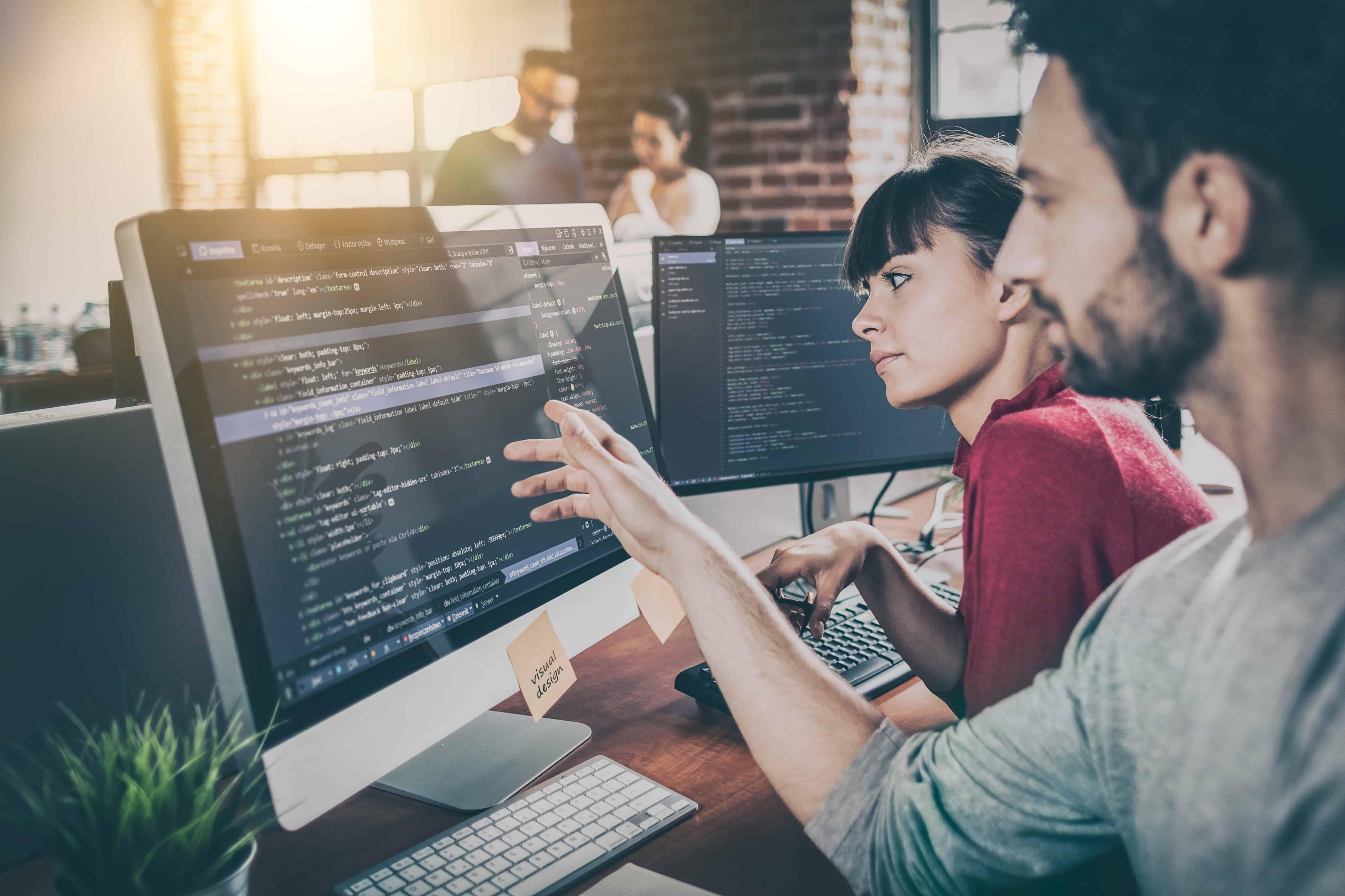 تفاوت میان یک Coder و Developer از لحاظ تعاملات سازمانی